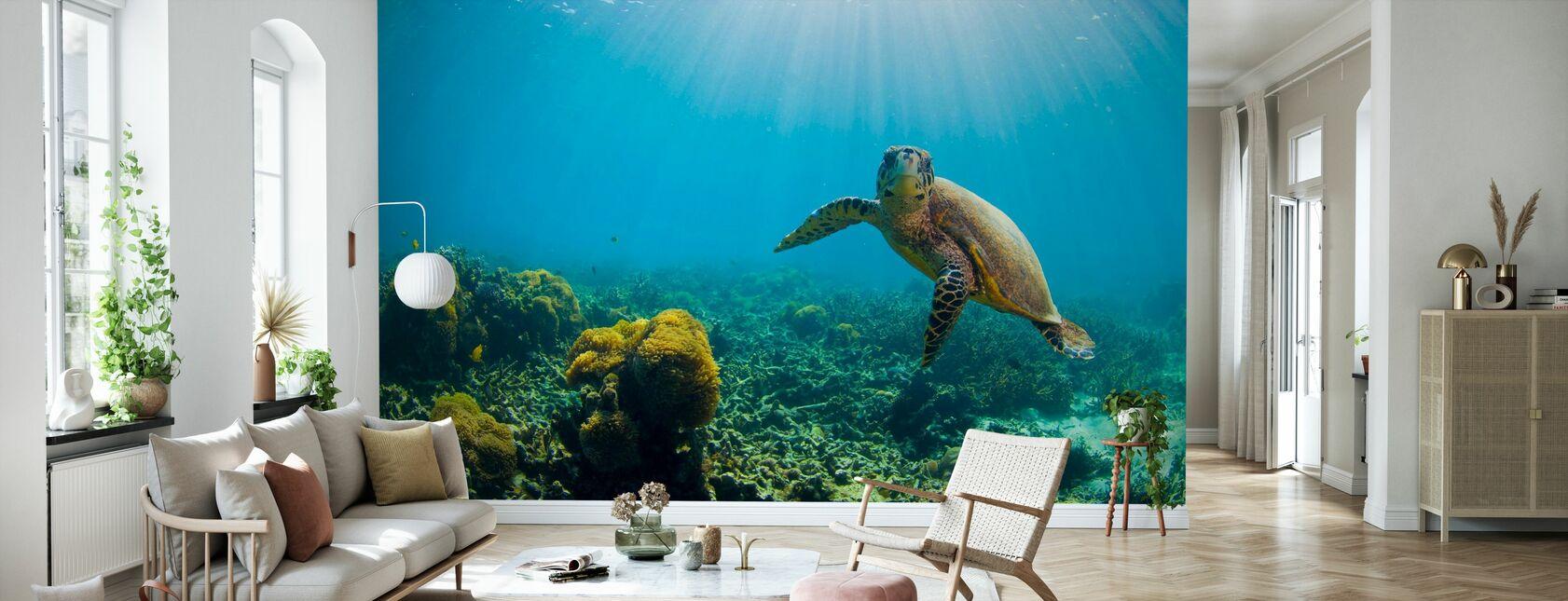 Charmante tortue - Papier peint - Salle à manger
