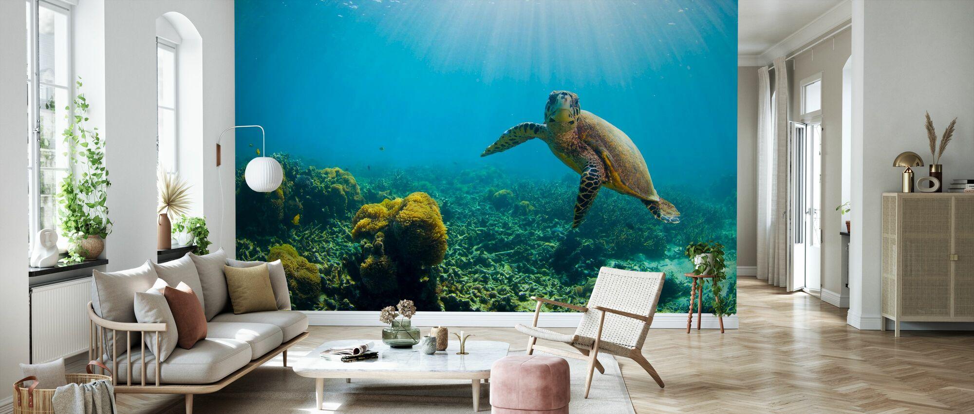 Charming Turtle - Wallpaper - Living Room