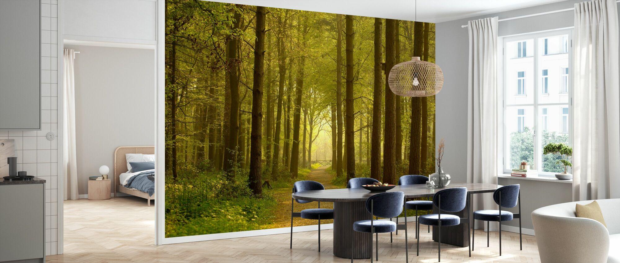 Path through Golden Forest - Wallpaper - Kitchen