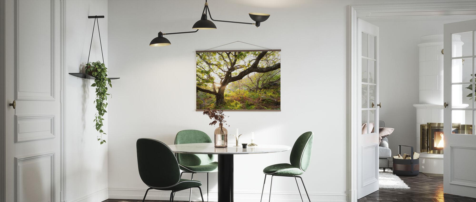 Great Oak Tree - Poster - Kitchen