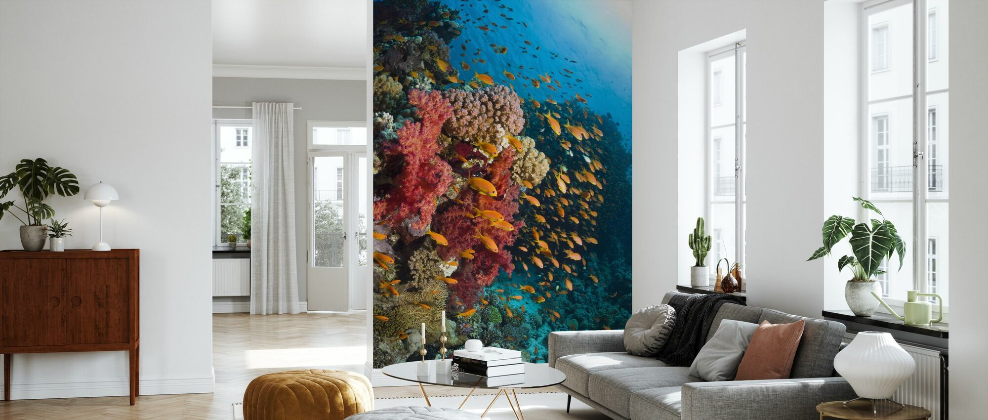 Soft Corals - Wallpaper - Living Room