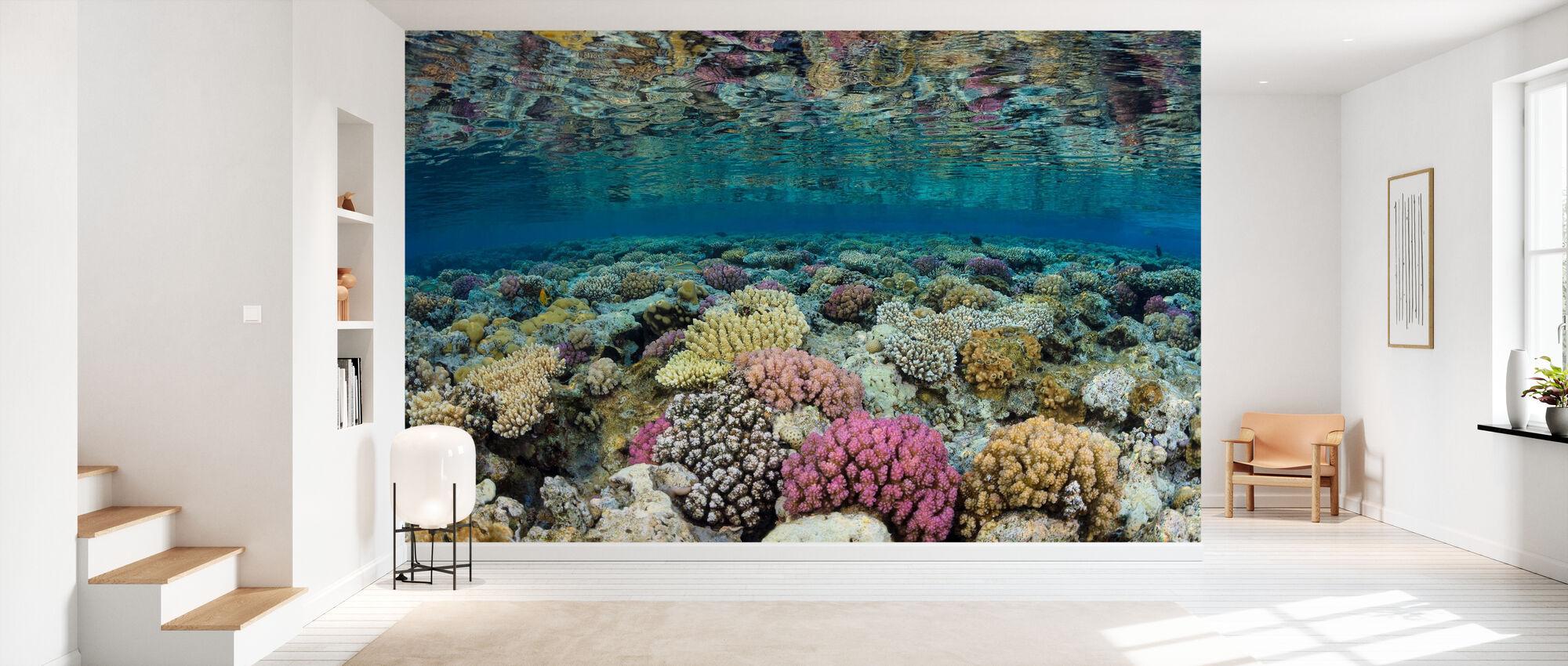 Shallow Reef - Wallpaper - Hallway