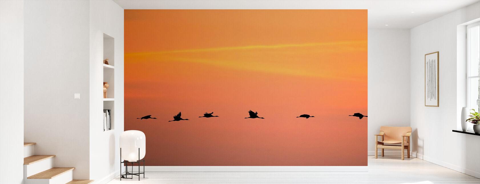 Cranes in Sunrise - Wallpaper - Hallway