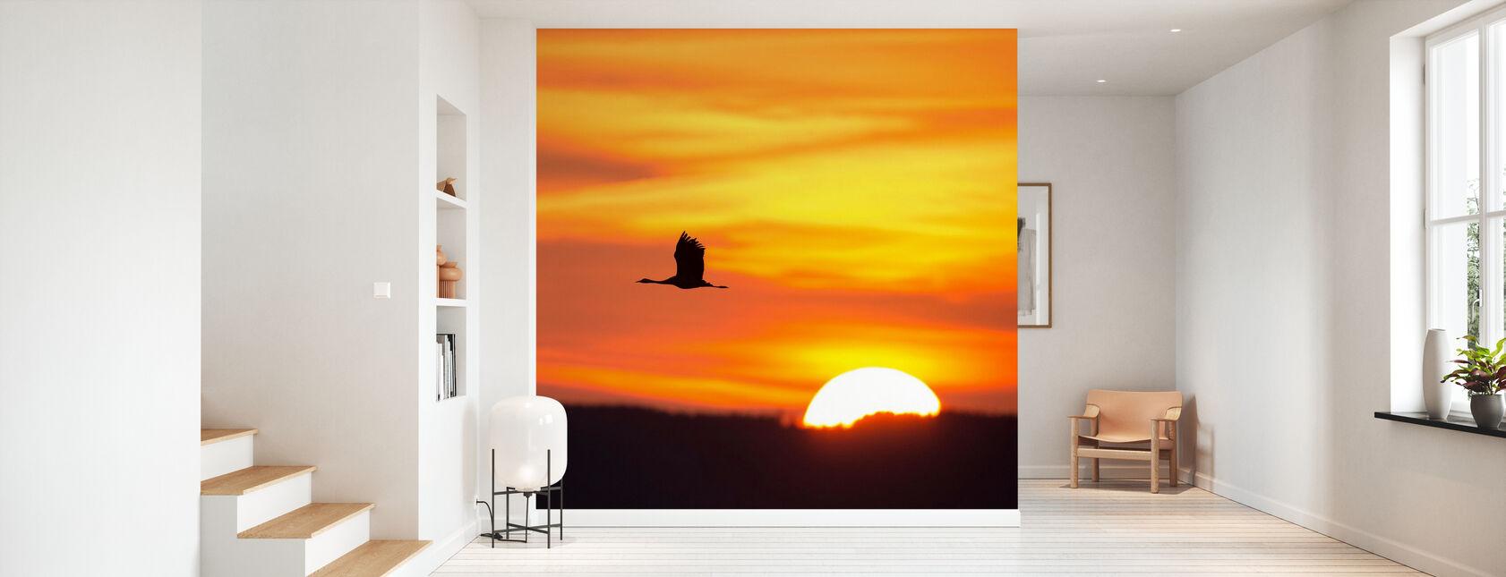 Crane and a Beautiful Sunrise - Wallpaper - Hallway