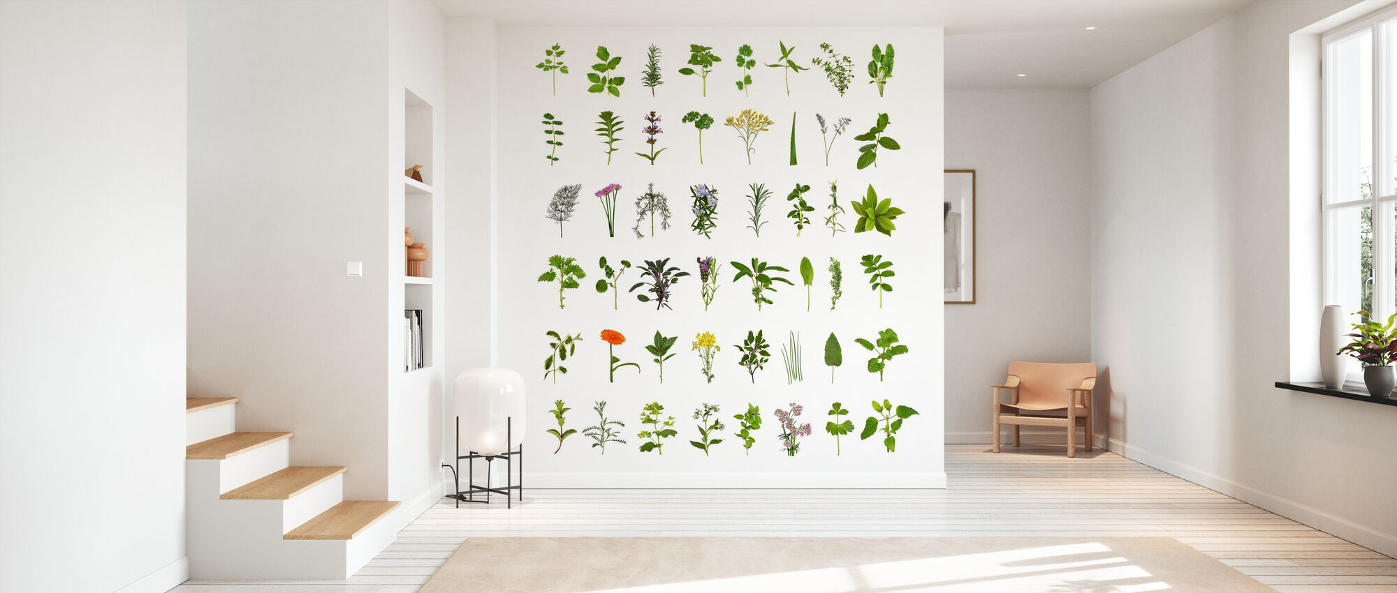 Herb and Flower Collection - Wallpaper - Hallway
