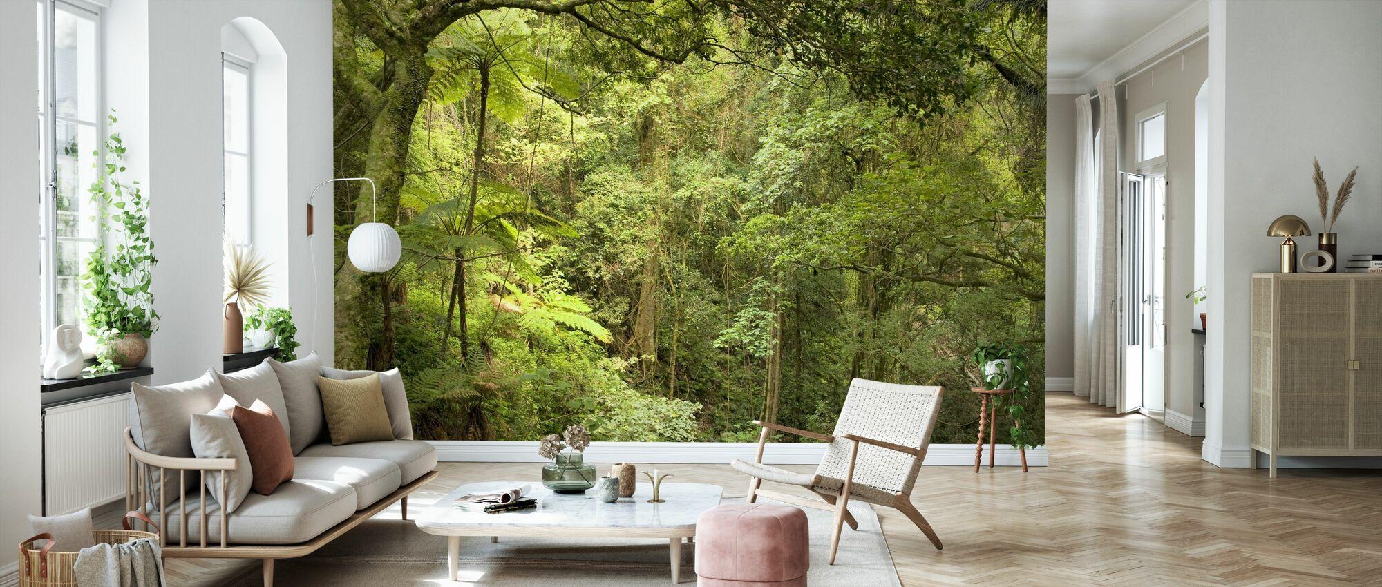 Bunya Mountains National Park - Wallpaper - Living Room