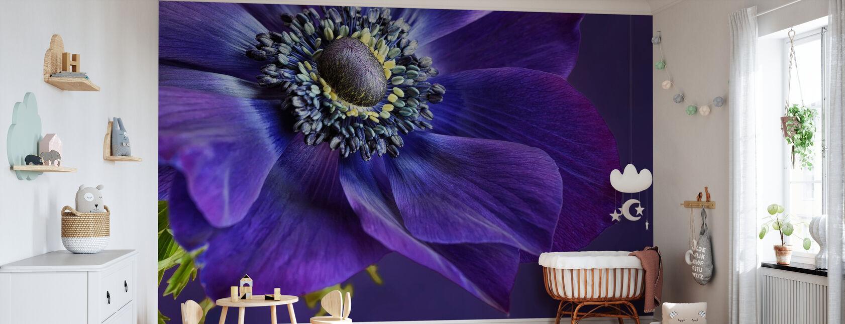 Indigo Anemone - Wallpaper - Nursery