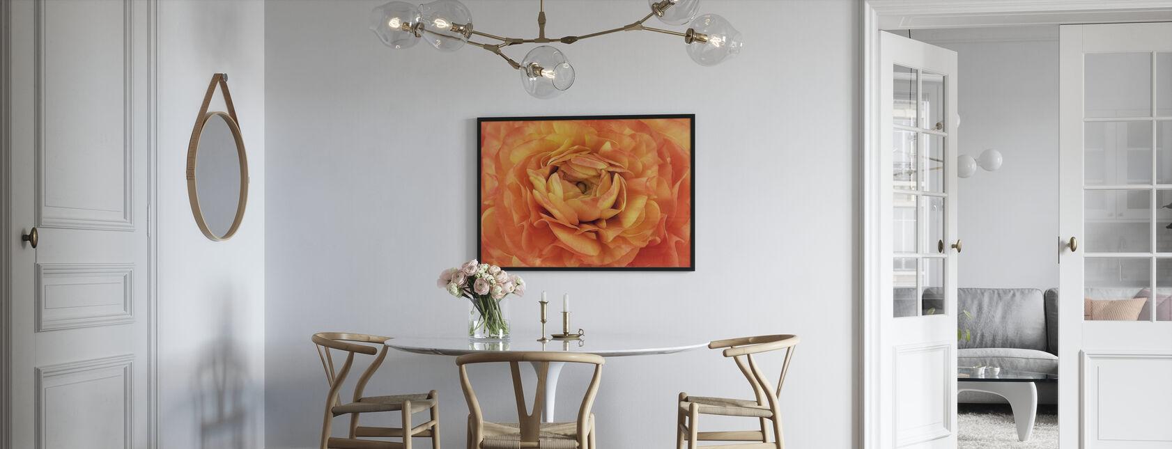 Orange Buttercup - Framed print - Kitchen
