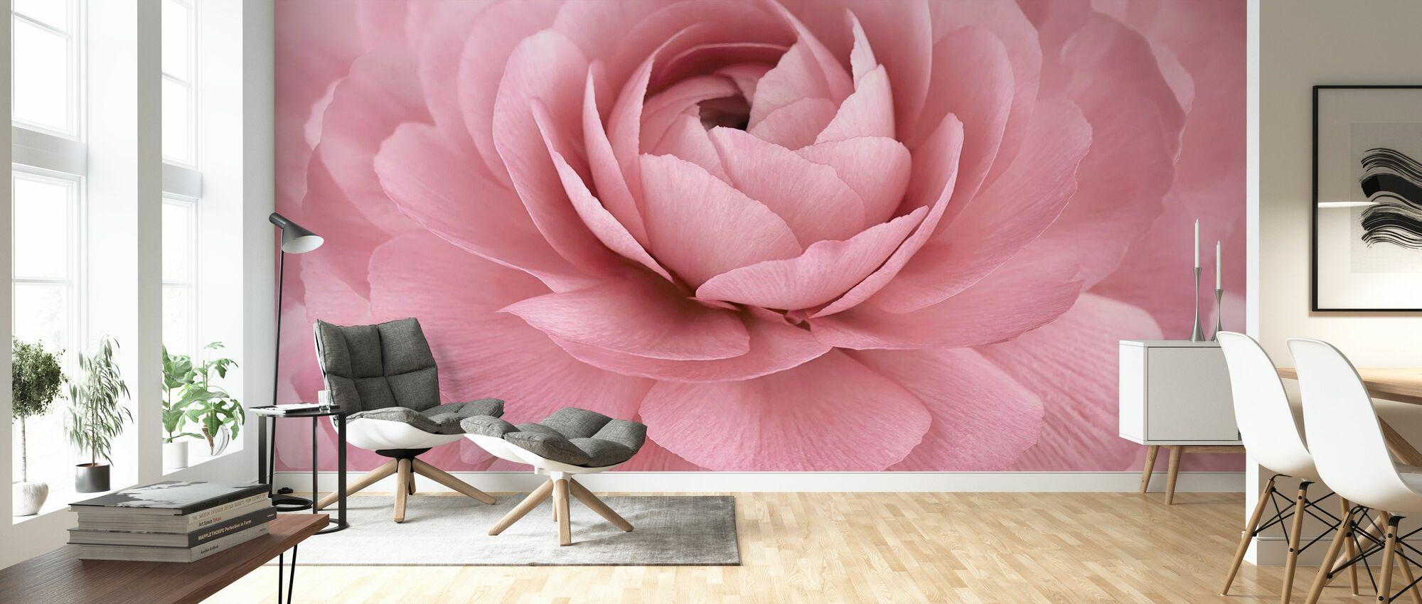Pink Buttercup - Wallpaper - Living Room
