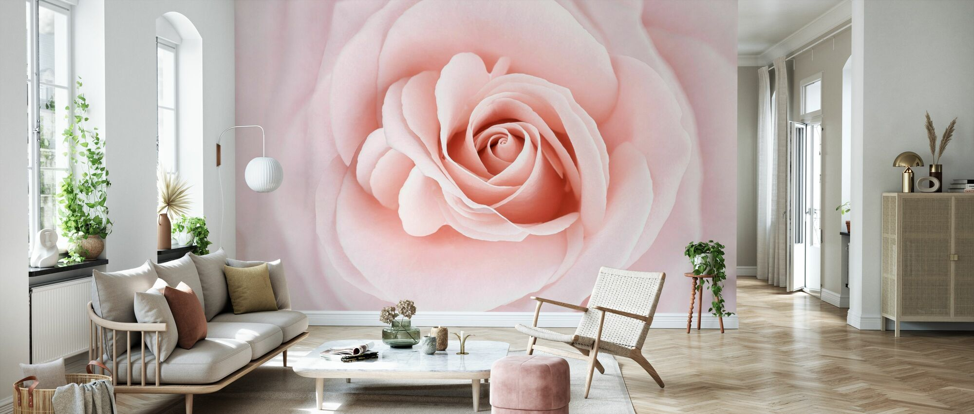 Soft Rose in Peach Pink Shades - Wallpaper - Living Room
