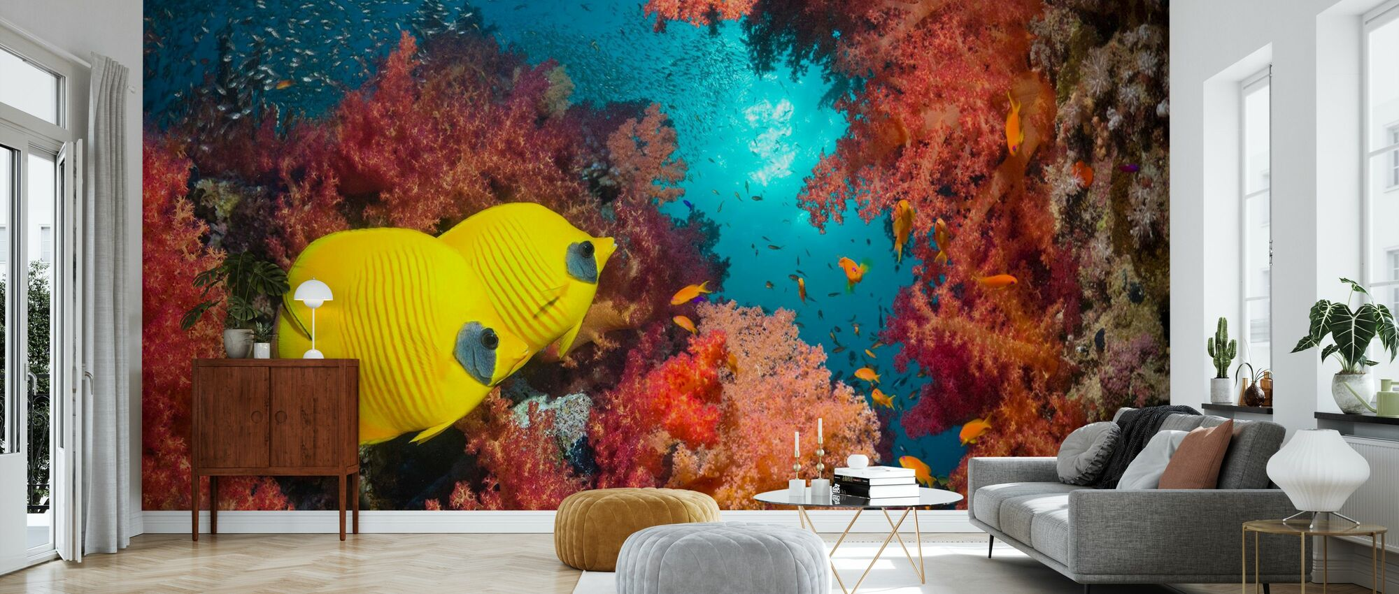 Butterfly Fish and Red Corals - Wallpaper - Living Room