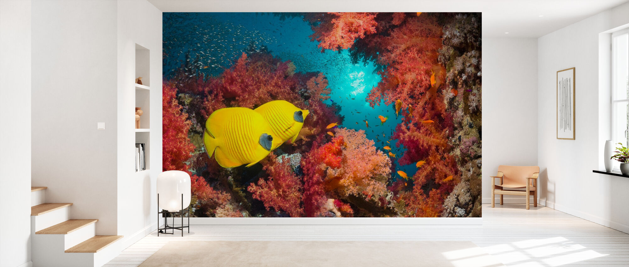 Butterfly Fish And Red Corals High Quality Wall Murals With Free Us Delivery Photowall