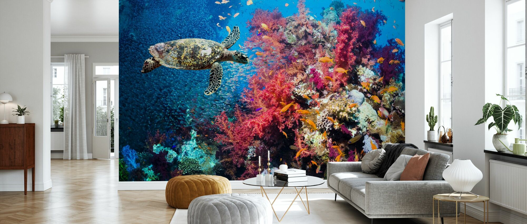 Turtle and Corals - Wallpaper - Living Room