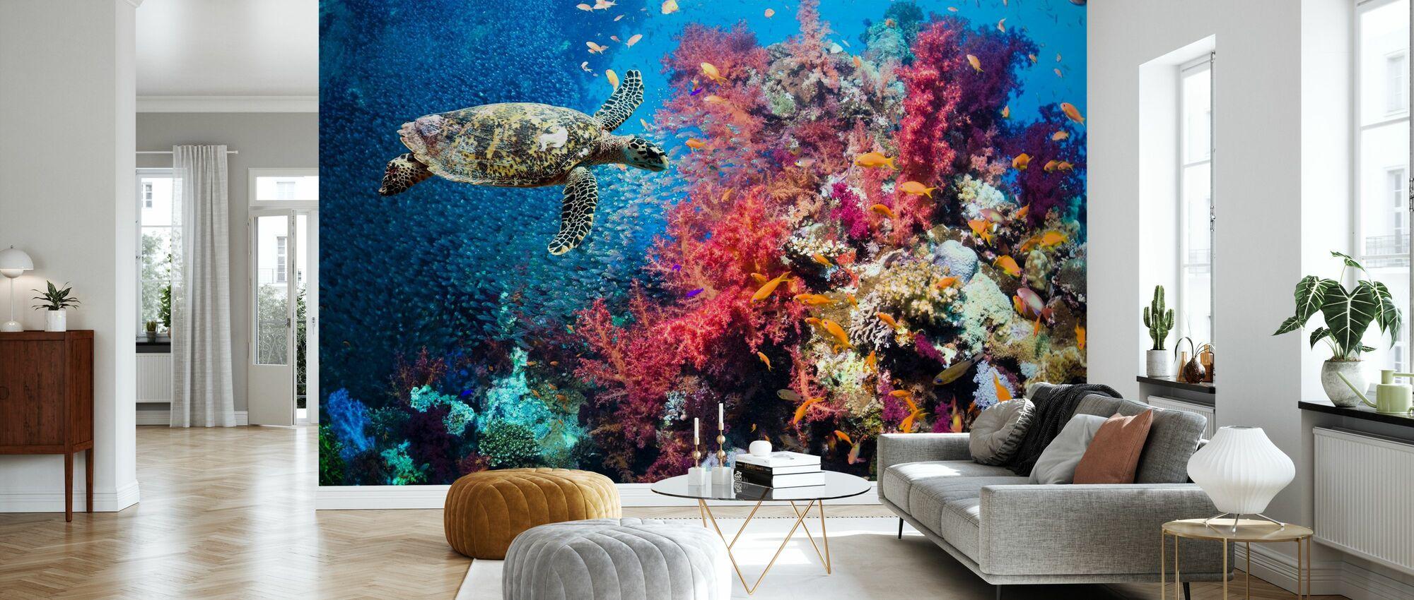 Sköldpadda och koraller - Tapet - Vardagsrum