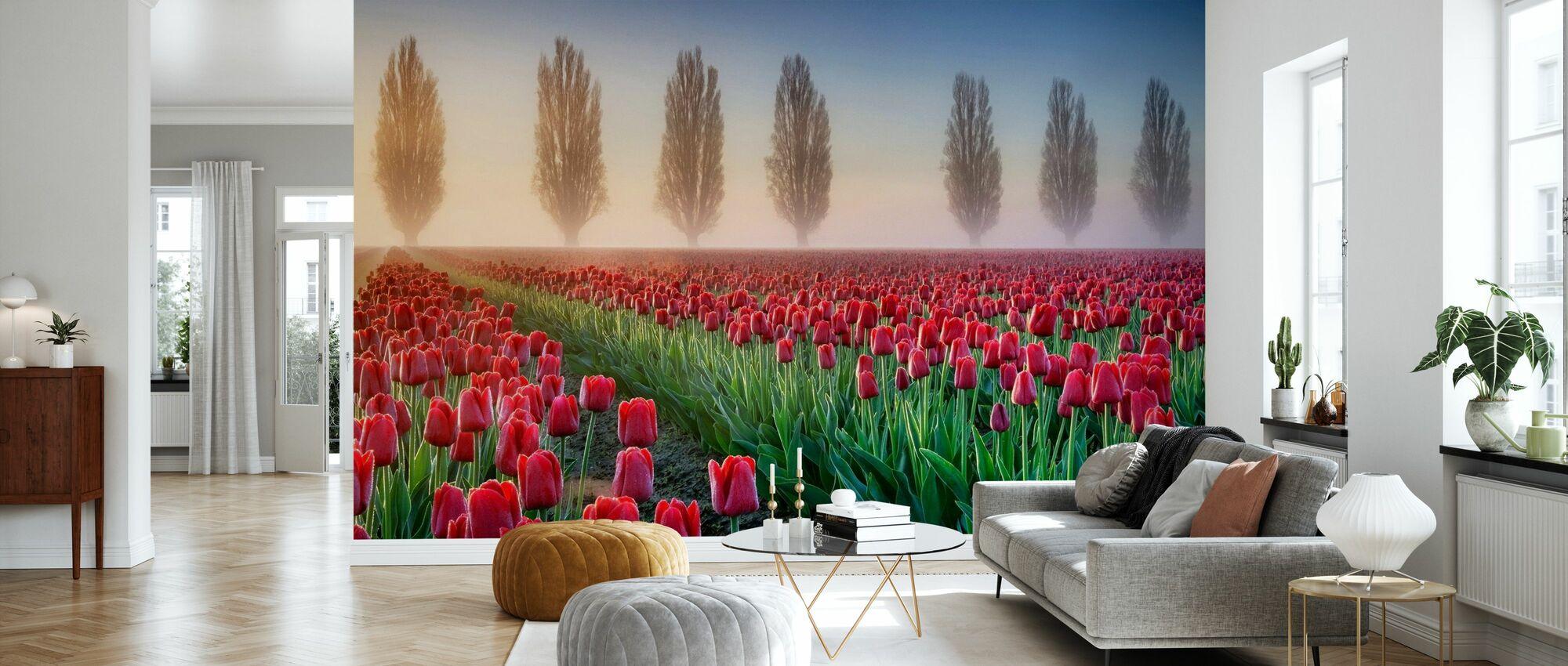 Misty Morning in Tulip Field - Wallpaper - Living Room