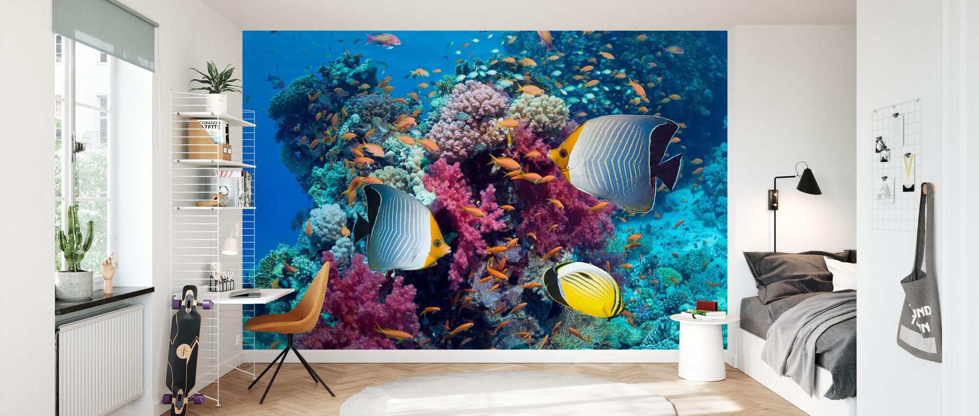 Butterfly Fish - Wallpaper - Kids Room
