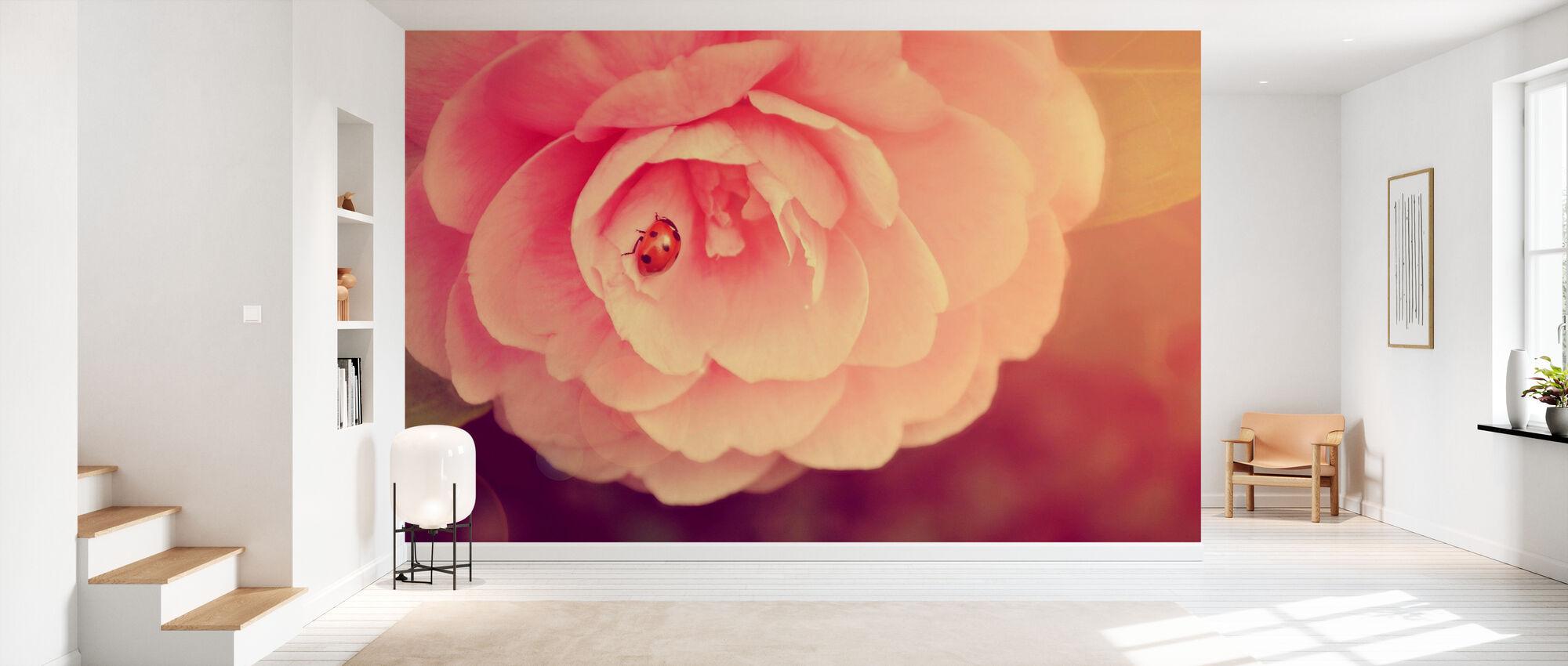 Leppäkerttu Camellia - Tapetti - Aula