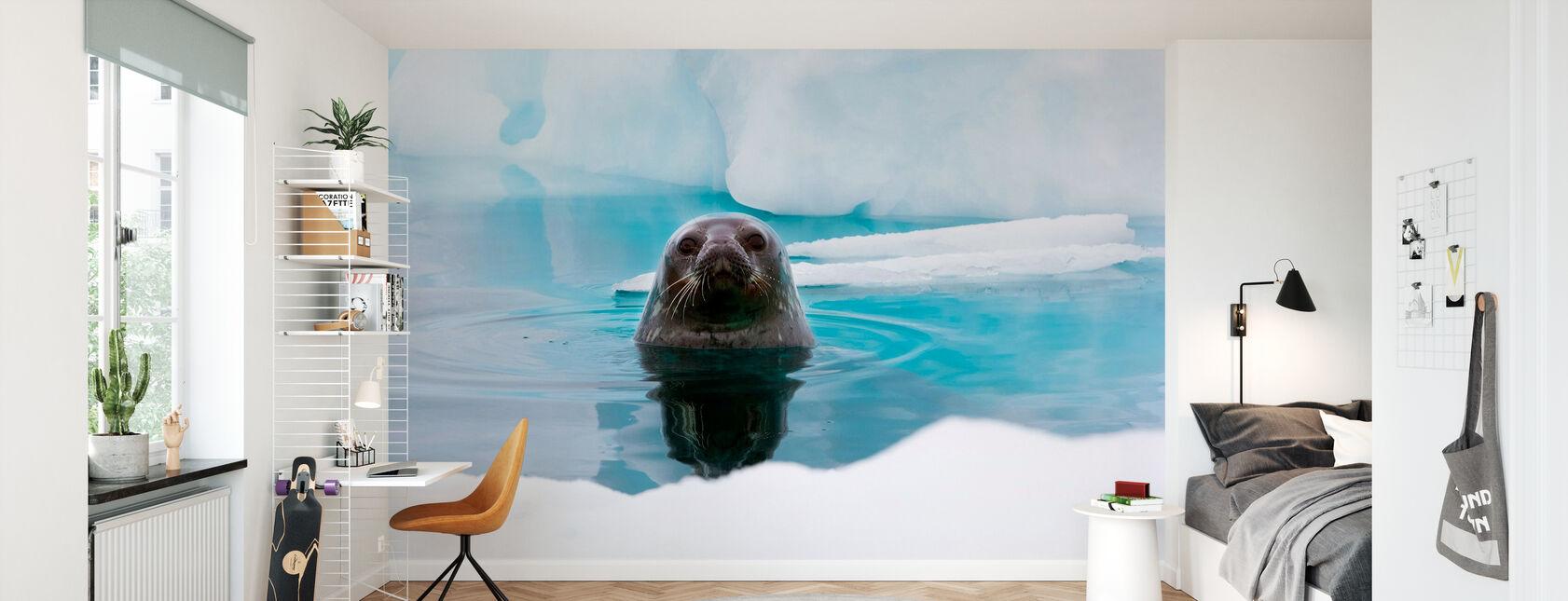Curious Seal - Wallpaper - Kids Room