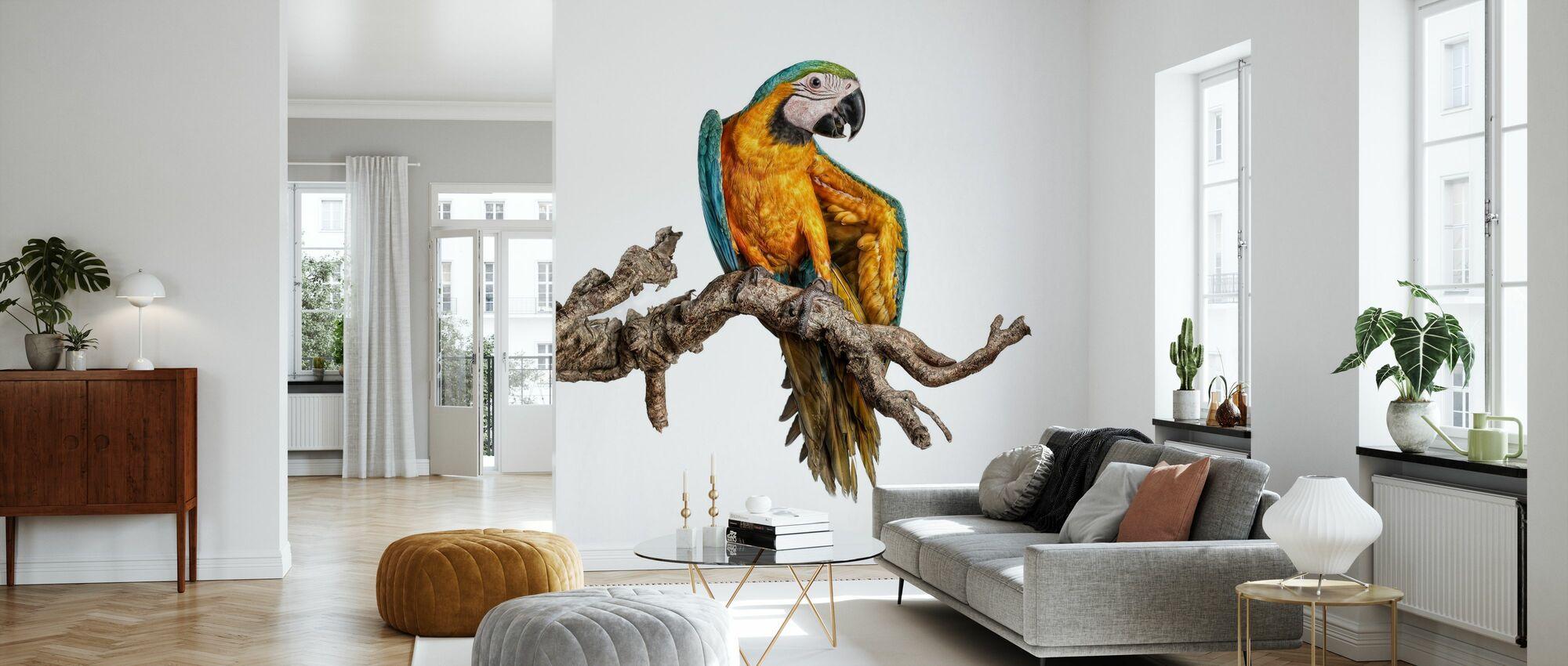 Dancing Parrot - Wallpaper - Living Room