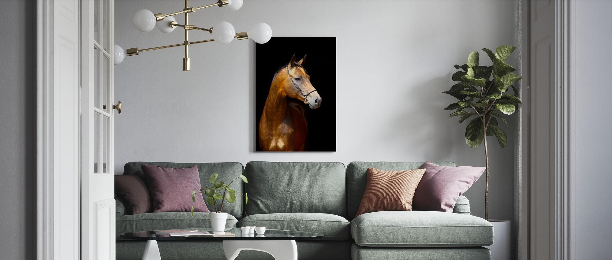 Golden Hest - Lerretsbilde - Stue