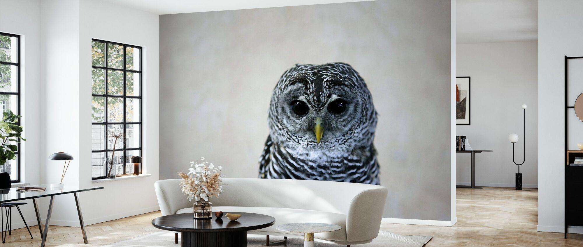 Portrait of an Owl - Wallpaper - Living Room