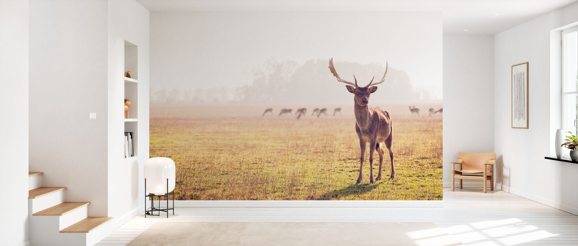 Fallow Deer - Wallpaper - Hallway