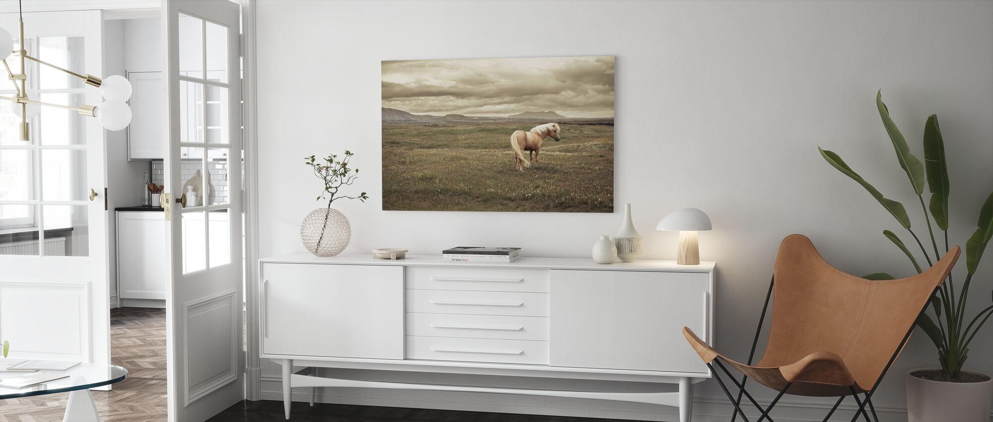 Cavallo islandese - Stampa su tela - Salotto