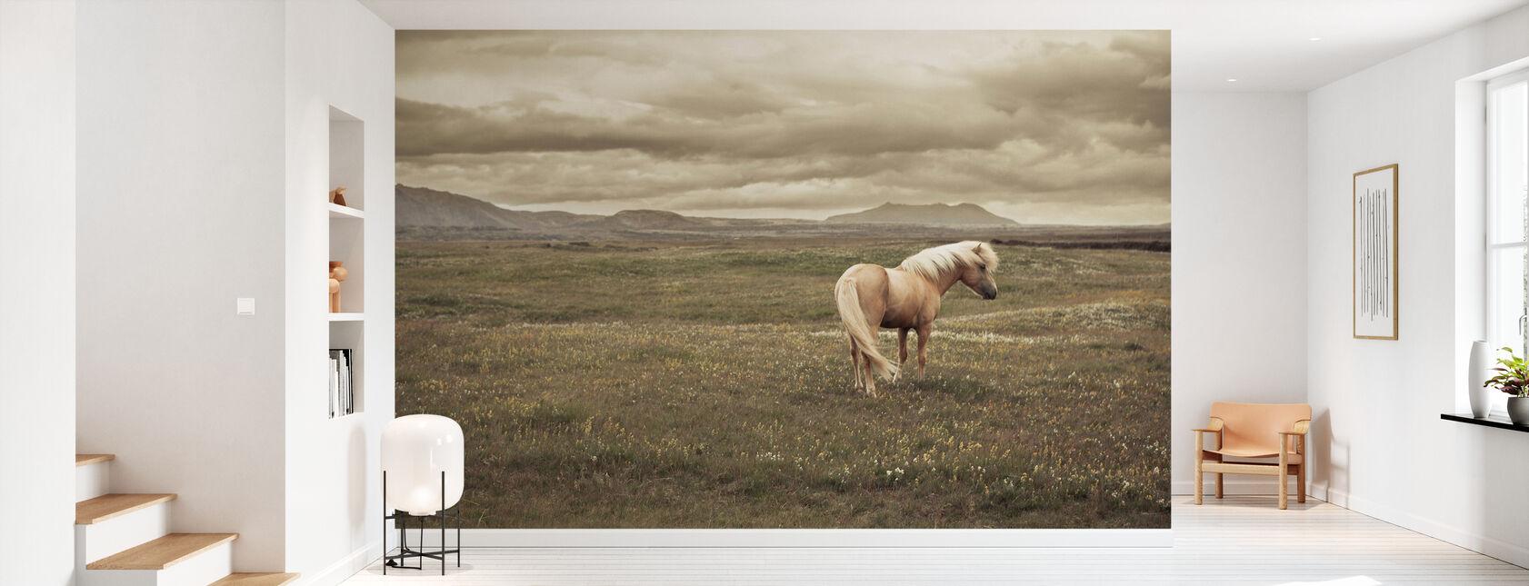 Isländsk häst - Tapet - Hall