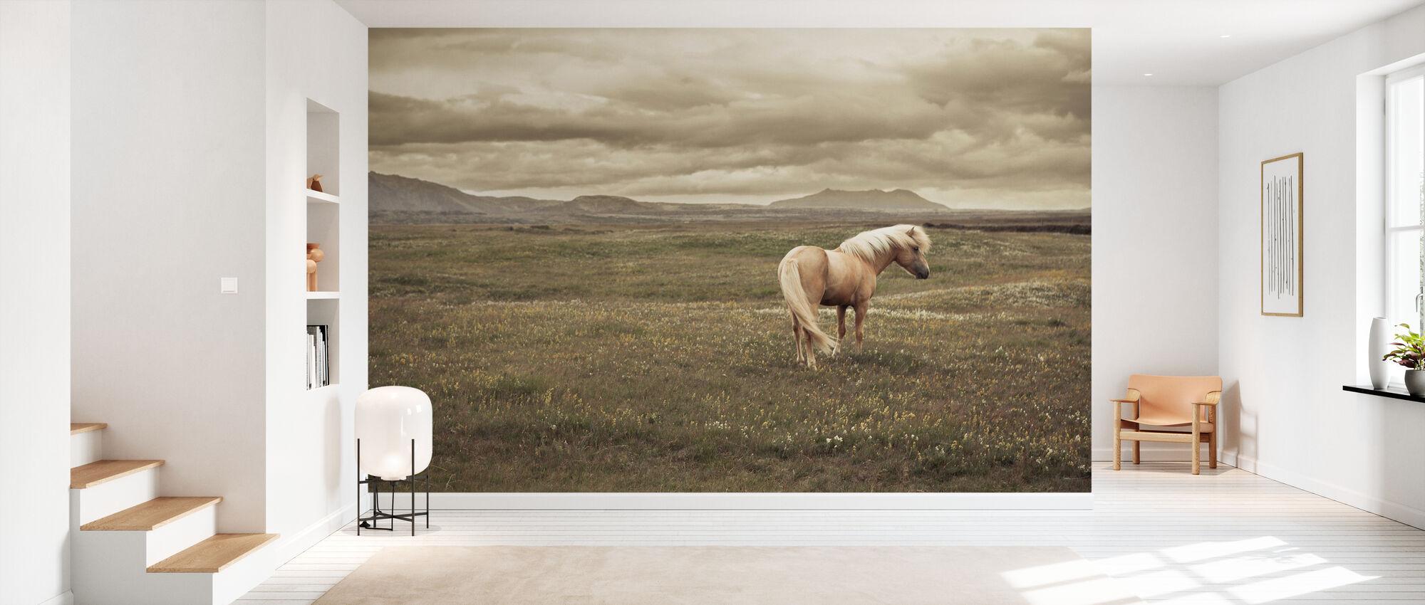 Islandsk hest - Tapet - Gang
