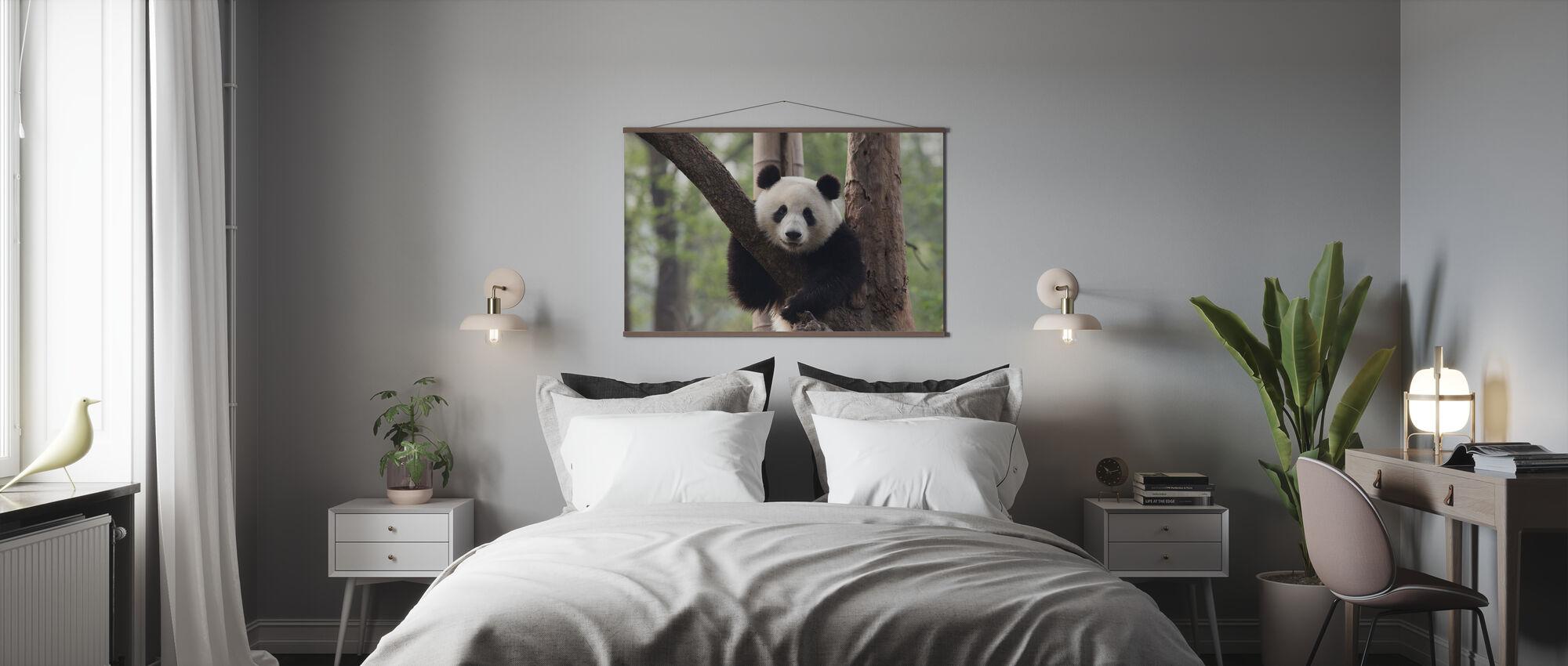 Sweet Panda - Poster - Bedroom