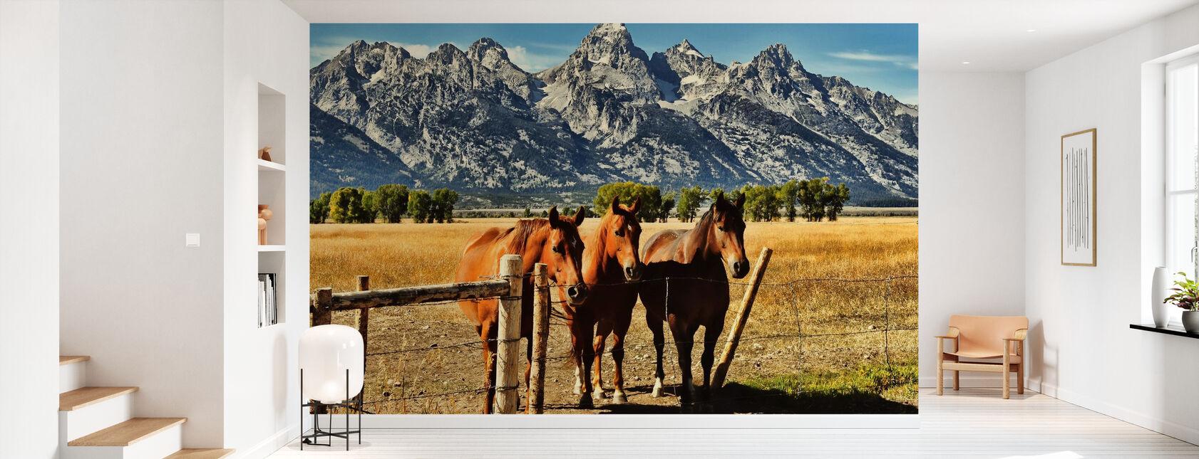 Trio in front of Teton Mountain Range - Wallpaper - Hallway