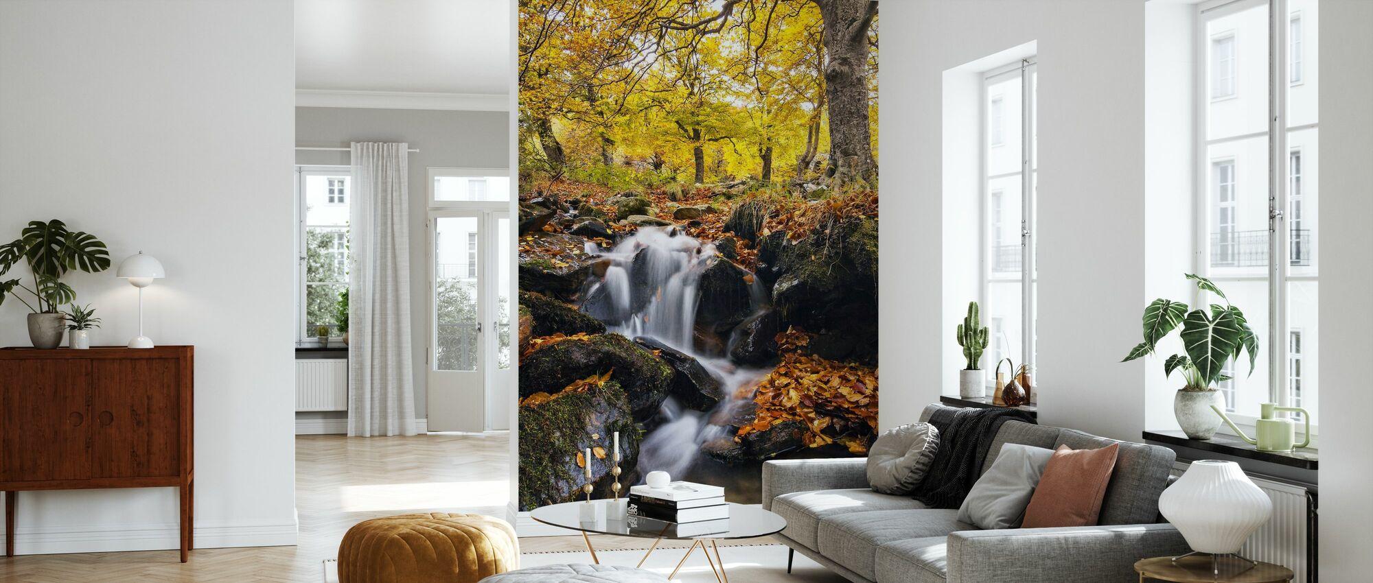 Stänk av hösten - Tapet - Vardagsrum