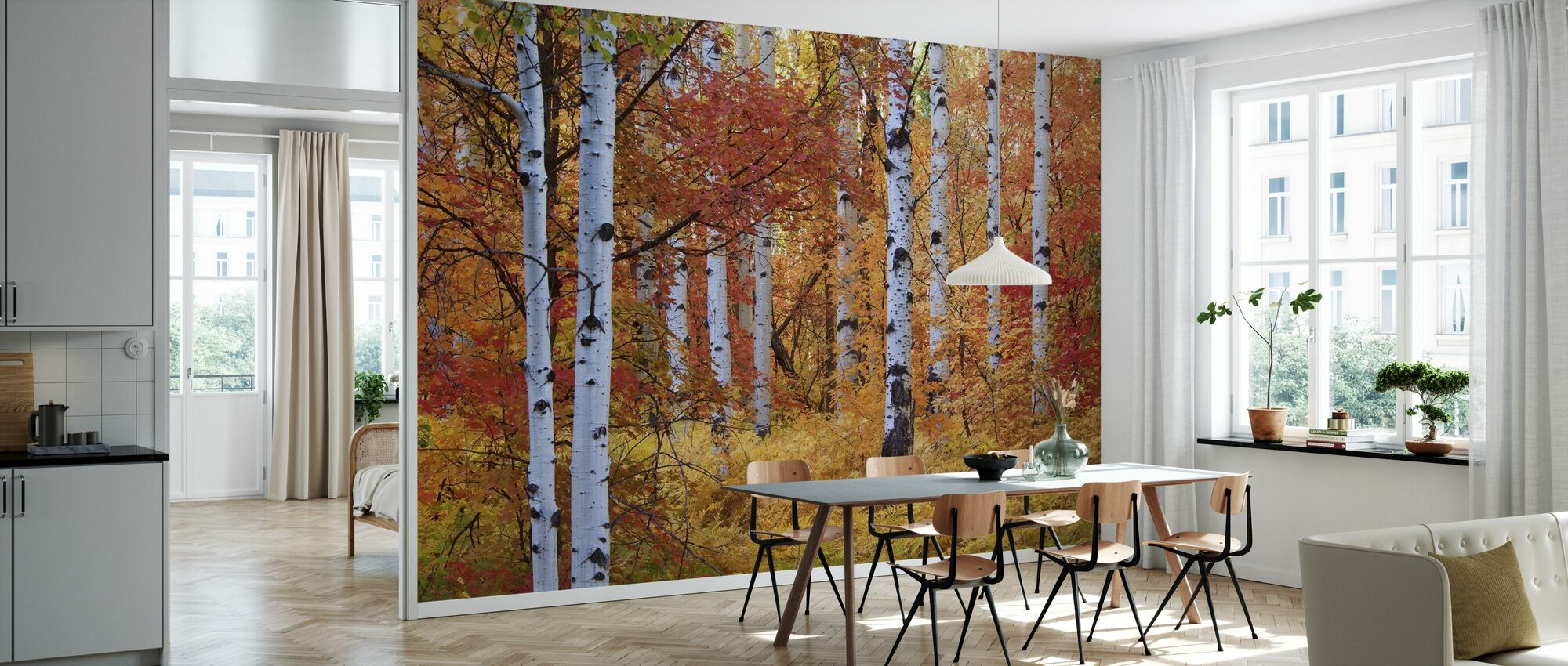 Autumn Birches of the Rocky Mountains - Wallpaper - Kitchen