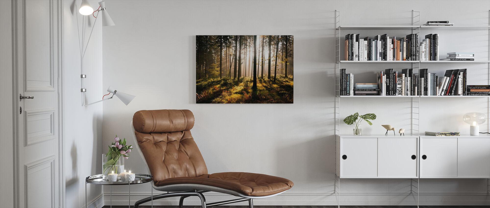 Foresta autunnale con raggi - Stampa su tela - Salotto