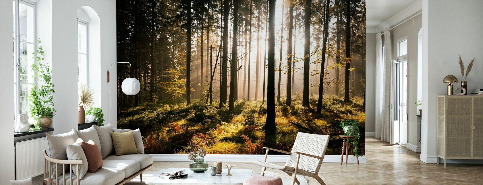 Herfst bos met zonnestralen - Behang - Woonkamer