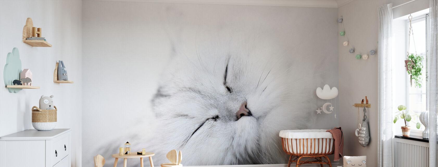 Valkoinen kissa - Tapetti - Vauvan huone