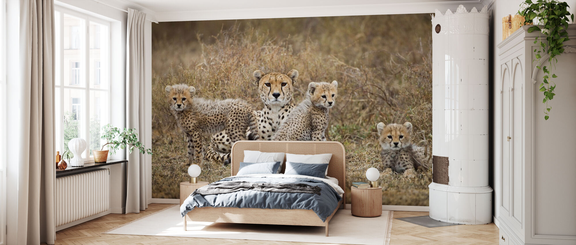 Cheetah Cubs and Mother - Wallpaper - Bedroom