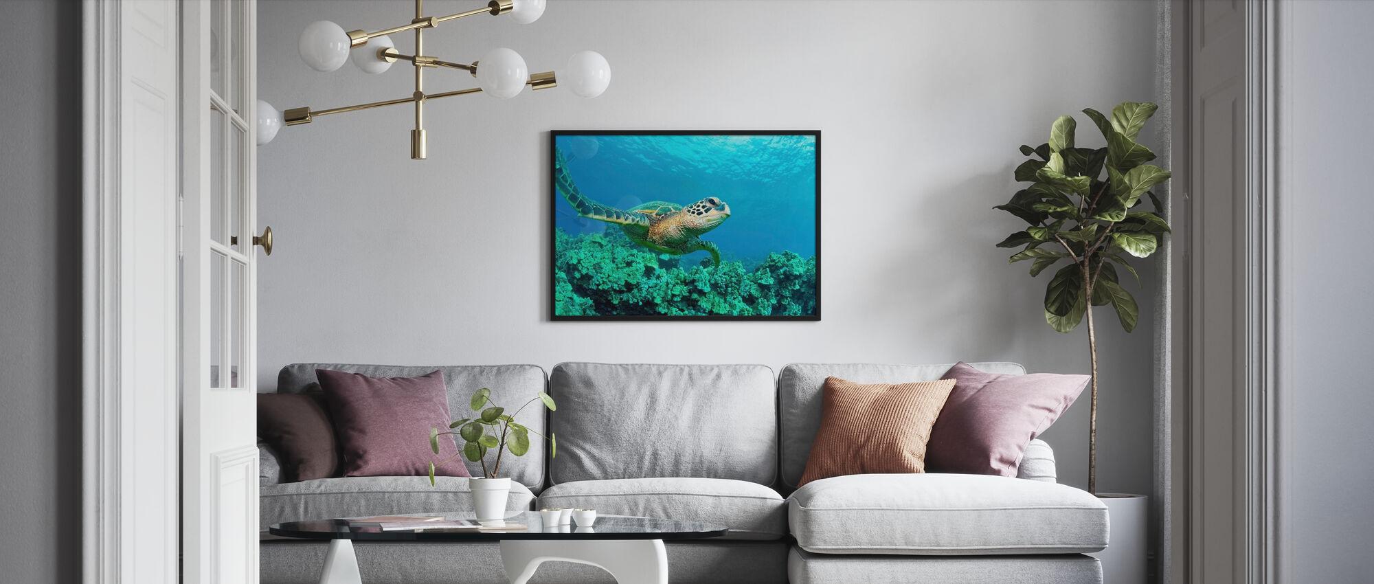 Havssköldpadda i korall - Inramad tavla - Vardagsrum