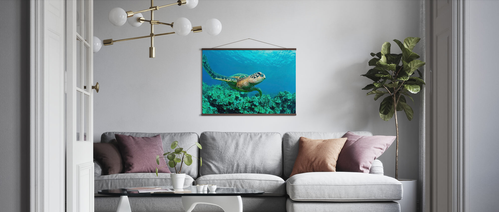 Sea Turtle in Coral - Poster - Living Room