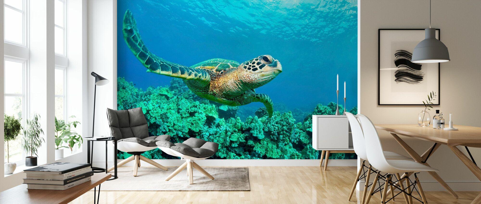 Sea Turtle in Coral - Wallpaper - Living Room