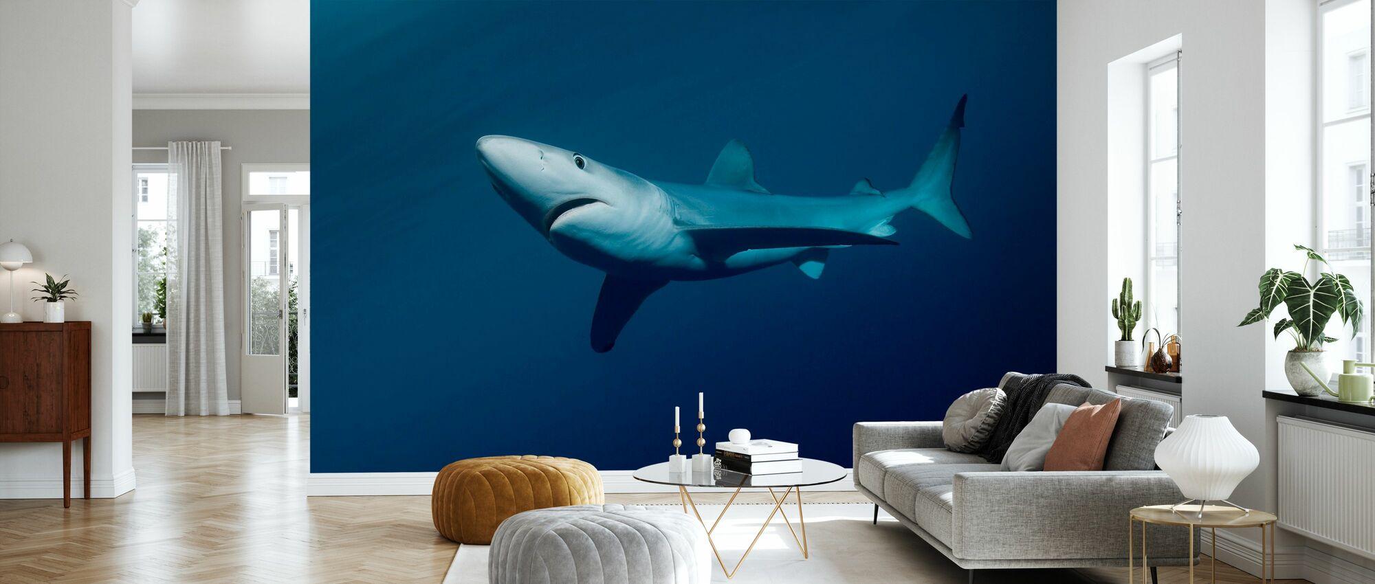 Blue Shark - Wallpaper - Living Room