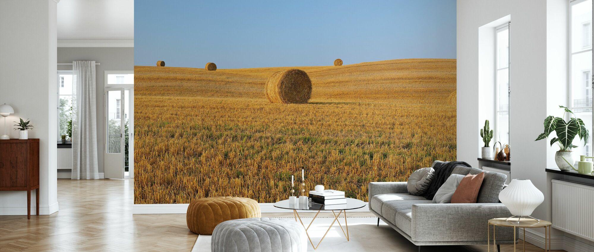 Harvested Wheat Field - Wallpaper - Living Room