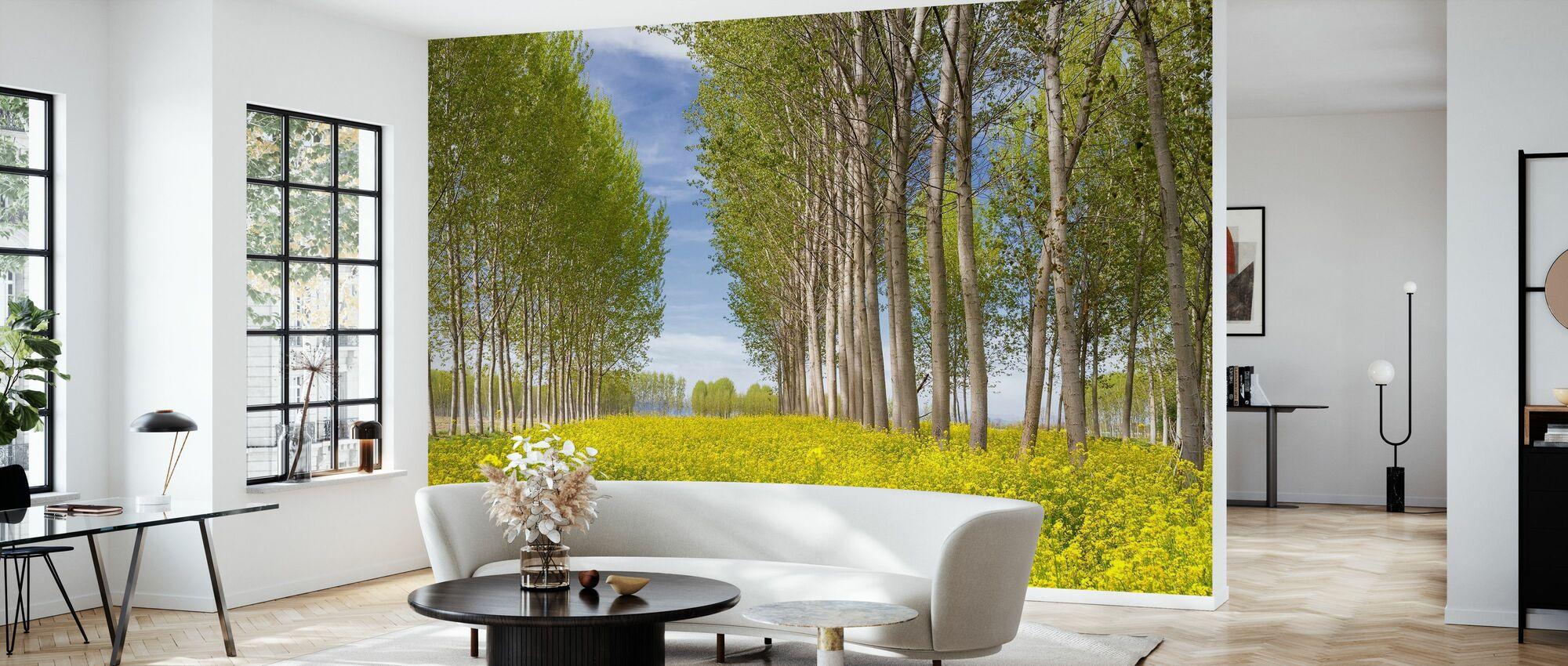 Poplars Trees in Golden Field - Wallpaper - Living Room