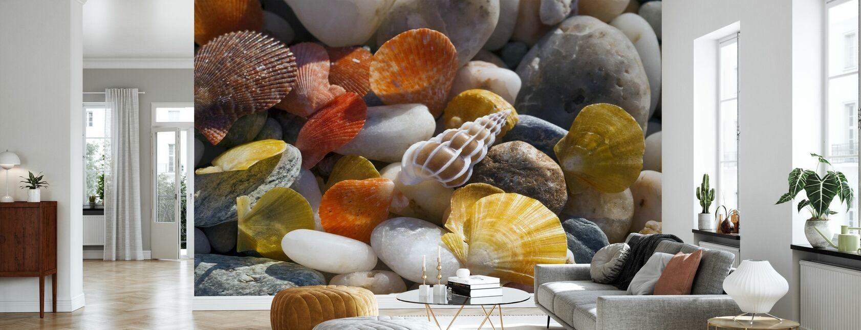 Colorful Seashells and Pebbles - Wallpaper - Living Room