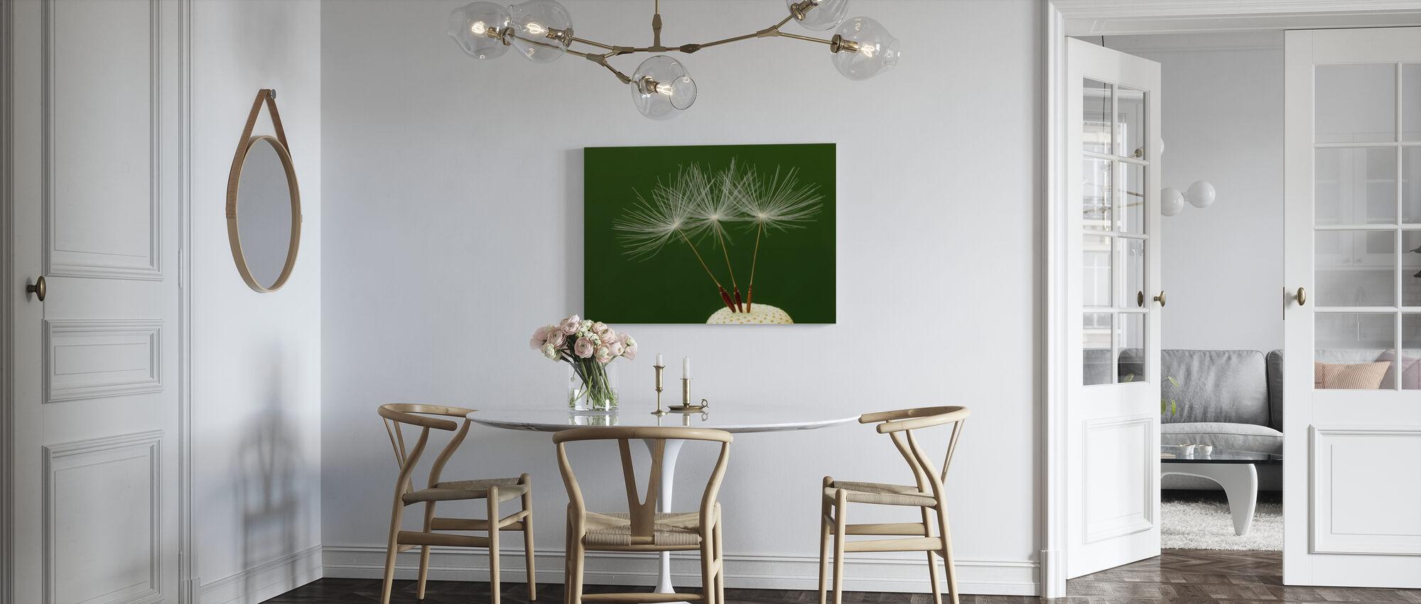 Drei Löwenzahn Samen - Leinwandbild - Küchen