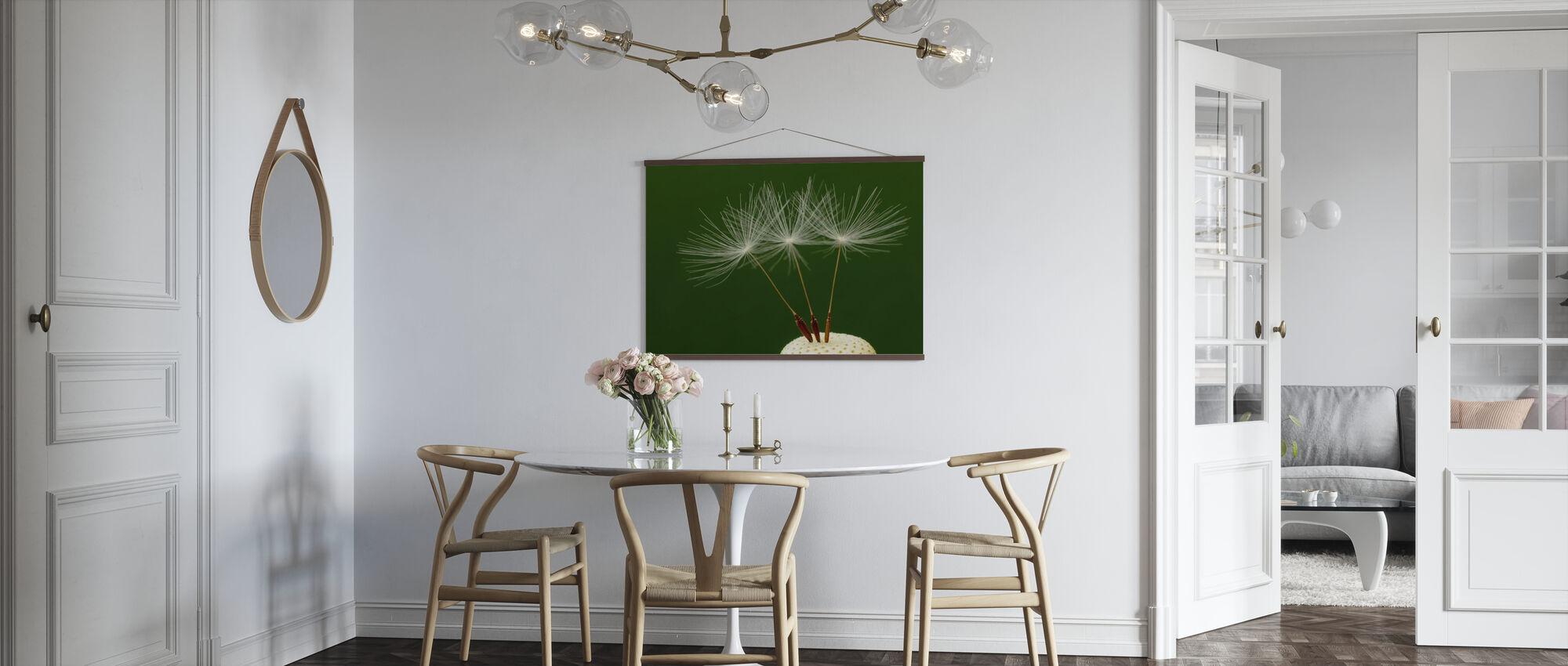 Three Dandelion Seeds - Poster - Kitchen