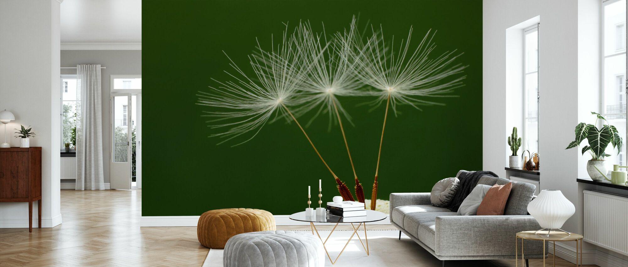 Three Dandelion Seeds - Wallpaper - Living Room