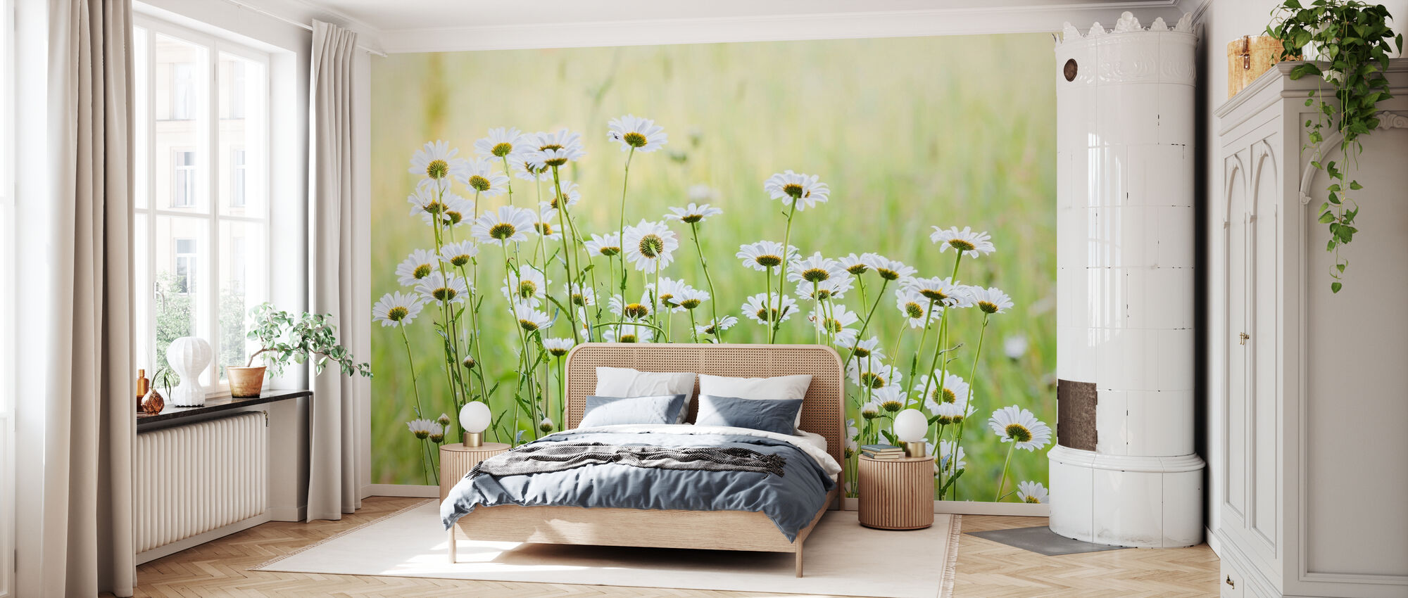 Daisies - Wallpaper - Bedroom