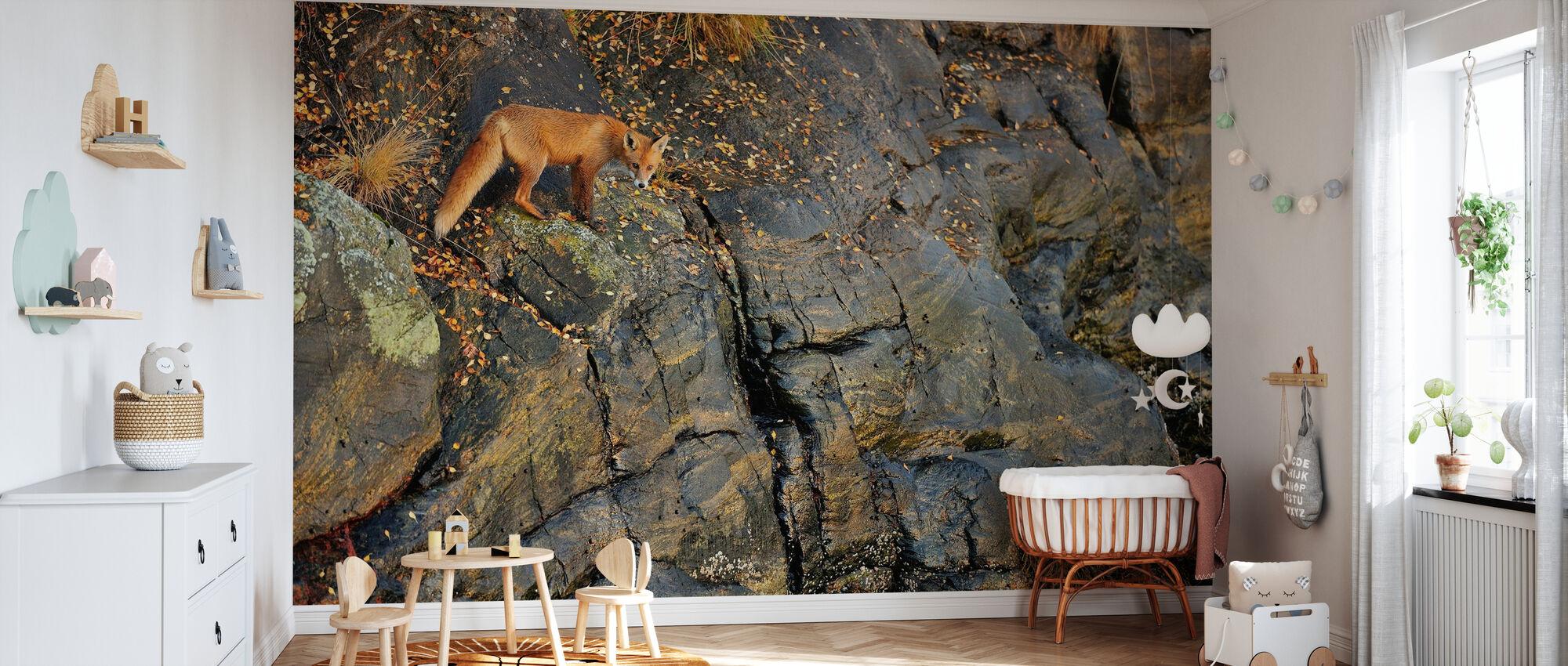 Fuchs auf den Felsen - Tapete - Babyzimmer