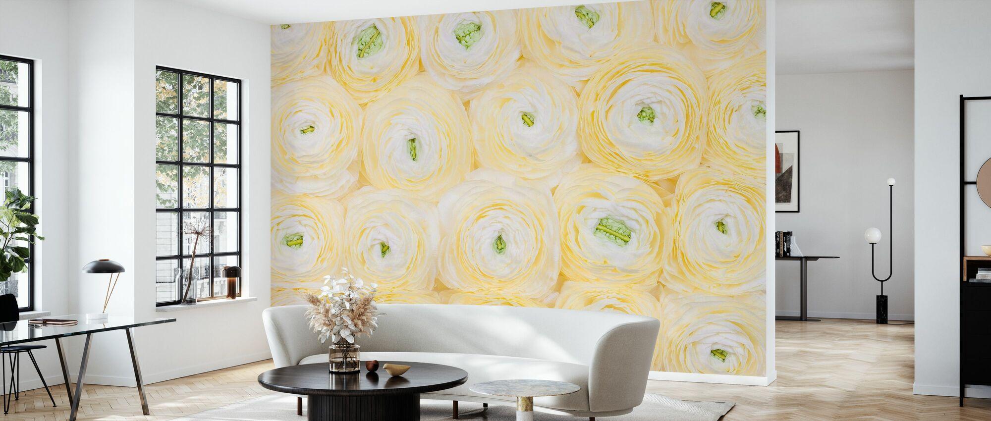 Mjuk gul Ranunculus - Tapet - Vardagsrum